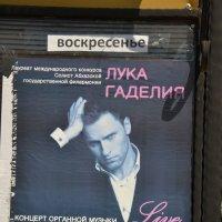 ЛУКА  ГАДЕЛИЯ :: Виктор Осипчук