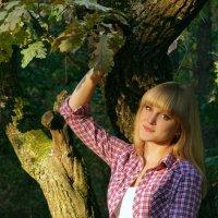 в лесу :: Алина Земцова