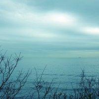 Осенний пейзаж :: Swetlana V