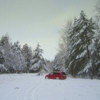 Красный авто . :: Мила Бовкун