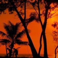 Пляж Карон на Пхукете в Таиланде в предзакатный час..... :: Рустам Илалов