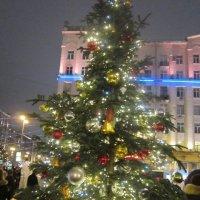 В самом центре Москвы ёлка светит в ночи :: Дмитрий Никитин