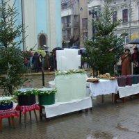 Праздник  Водокрещения  в  Ивано - Франковске :: Андрей  Васильевич Коляскин