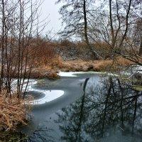Река Гжелка. Декабрь :: Леонид Иванчук