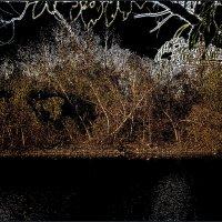 Осеннее марево :: Нина Корешкова