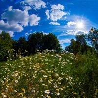 Ах, лето!... :: Игорь Герман