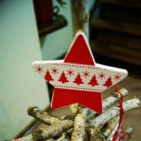 Звезда на макушке :: Galina Belugina