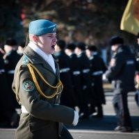 Парад :: Андрей Вьюшков