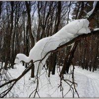 Снежные скульптуры :: Андрей Заломленков