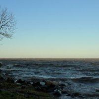 Неустойчивое равновесие :: Вера Моисеева