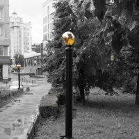 После дождя :: Юрий Новичков