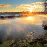 Золотой рассвет декабря... :: Андрей Войцехов