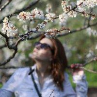 Весна :: Илья Харламов