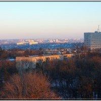 Декабрьский рассвет :: Наталья Тимошенко