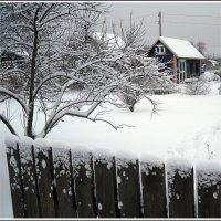 Дача зимой :: muh5257