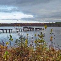 Озеро Даниковское.Мостки :: Валерий Талашов