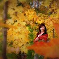 Осень в ярких красках :: Наталья Озерская