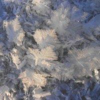 Снежные кристаллы :: Ирина Олехнович