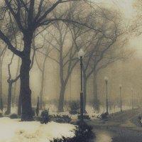 Зимний пейзаж :: Ольга Назаренко
