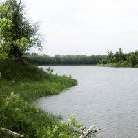 Изгибы реки :: Мария Букина