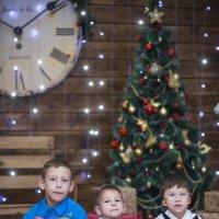 в ожидании новогодней сказки :: Ирина Автандилян