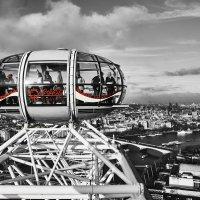 London Eye B&W :: ercalote