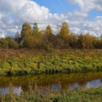 Осень в разгаре :: Вера Андреева