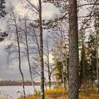 Осень на озере :: Валерий Талашов