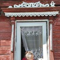 Задушевная беседа :: Валерий Толмачев