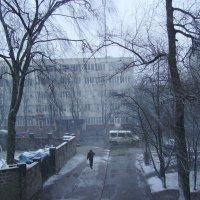 Зимняя  погода  в  Ивано - Франковске :: Андрей  Васильевич Коляскин