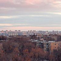 Утро красит нежным цветом... :: Наталья Тимошенко