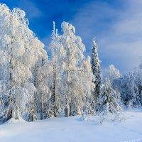 Зима на Урале :: Анатолий