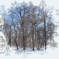 Зима в окошке... :: Тамара (st.tamara)