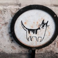 Своеобразие у кафе с кошками :: 고토 랜