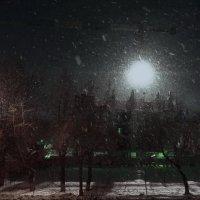 Свет и снег :: Игорь