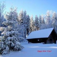 Счастливого Нового года и Рождества! :: Olga