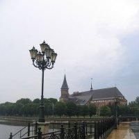 После дождя.. (Калининград. Вид на Кафедральный Собор) :: Elena N