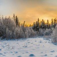 Холодное солнце :: Георгий Кулаковский