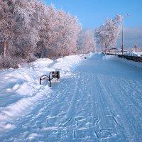 Морозный день в Сургуте. :: Алексей Хаустов