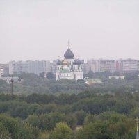 В Коломенском :: Михаил Андреев