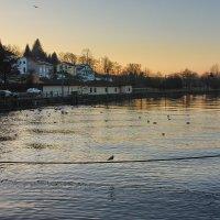Вечер на Дунае :: Вальтер Дюк