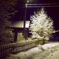 Когда фонарики качаются ночные... :: Николай Туркин