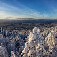 Морозным днем :: Александр Чазов