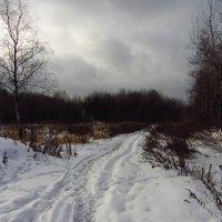 Декабрь, каким он бывал :: Андрей Лукьянов
