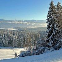 Зимний пейзаж :: Alexander Andronik