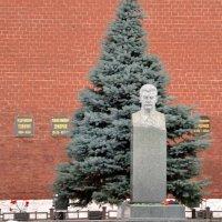 У Кремлёвской стены :: Владимир Болдырев