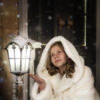 Первый снег :: Елена Комарова