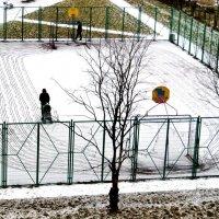 По снежной целине :: Виктор Никитенко