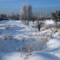 Как Вам нравится пейзаж - зимний наш сибирский?... :: Александр Попов