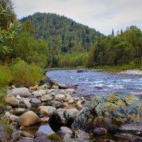 На таёжной реке :: Сергей Чиняев
